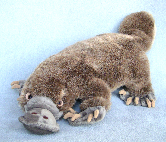 platypus-stuffed-plush-f787.jpg